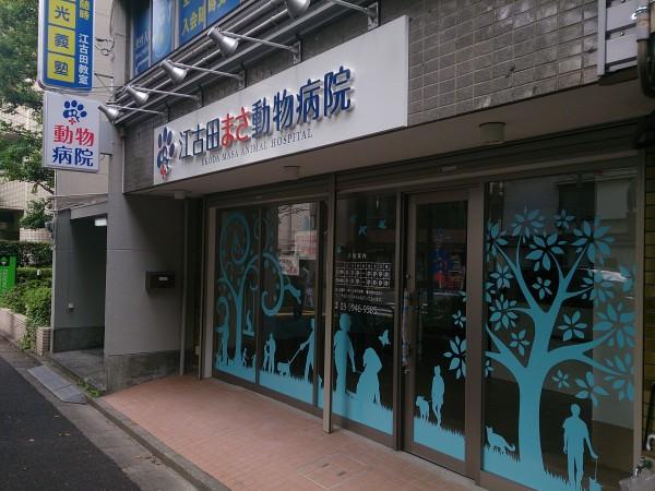 DSC_1247